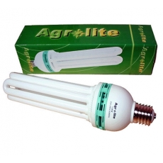 Fluorescentes (CFL) e Leds